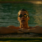 The Assassination of Gianni Versace: American Crime Story S02E06 Recap